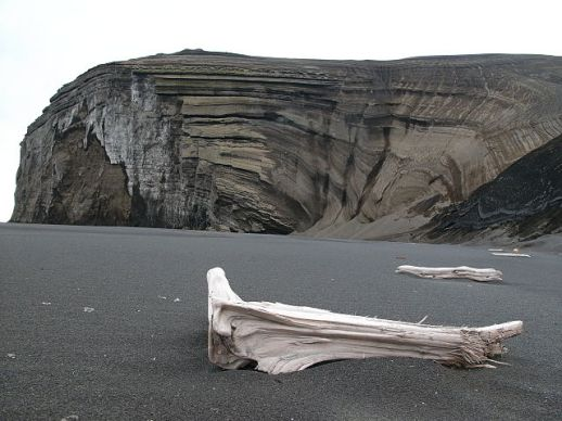 Driftwood on a beach on Jan Mayen (Image credit: Wikimedia Commons)