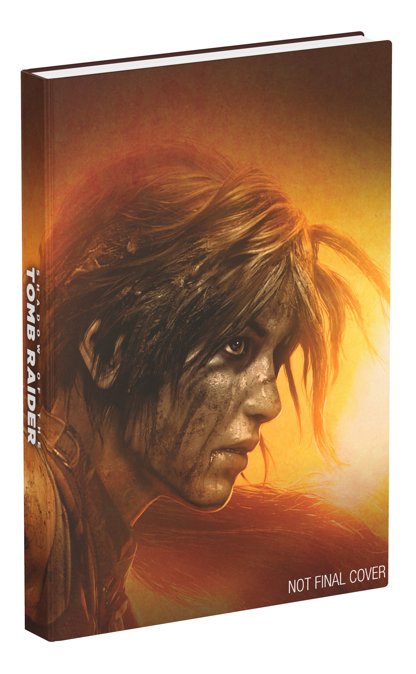 Shadow of the Tomb Raider collector's edition strategy guide